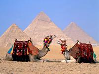Уникальный отдых в Египте