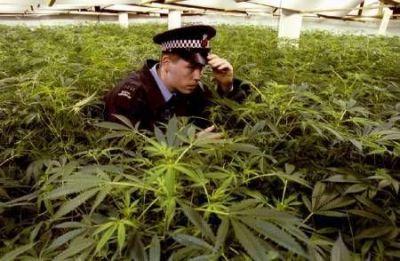 Вместо помощи от нидерландской полиции немец получит срок
