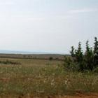 Предвыборная афера земельного масштаба