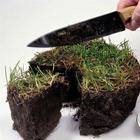 Как крымские бонзы дерибанят землю и устраняют людей, мешающих им в этом грязном деле